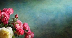 Предпосылка с розами Стоковая Фотография RF