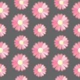 Предпосылка с розовыми цветками Стоковая Фотография RF