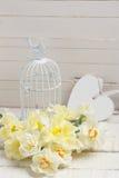 Предпосылка с свежими daffodils Стоковое фото RF