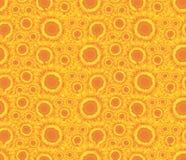 Предпосылка с солнцецветами Стоковое фото RF