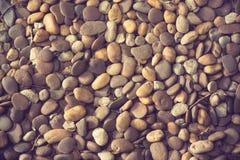 Предпосылка с сухими круглыми камнями Стоковое фото RF