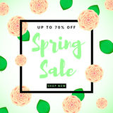 Предпосылка с творческими цветками, зеленое пастбище продажи весны красочная Стоковое Изображение RF