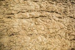 Предпосылка с треснутой, который сгоренной, безжизненной почвой Стоковое Фото