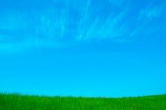 Предпосылка с лугом и небом Стоковые Изображения