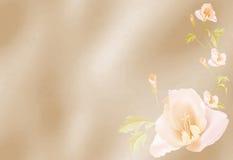Предпосылка с цветками Стоковое Изображение RF
