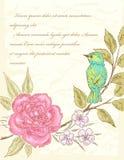 Предпосылка с цветком и птицей иллюстрация штока