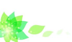 Предпосылка с цветком. Объект с путем клиппирования Стоковое Изображение RF