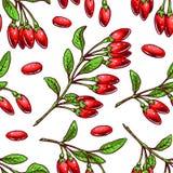 Предпосылка с ягодами goji Стоковые Изображения RF
