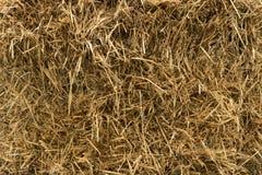 Предпосылка текстурированная сеном Стоковое Фото