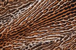 Предпосылка текстуры леопарда Стоковое Изображение RF