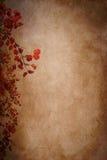 Предпосылка текстуры листьев осени бумажная Стоковые Изображения RF