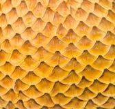 Предпосылка текстуры картины кожи дракона Стоковая Фотография
