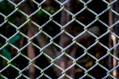 Предпосылка текстуры картины стены загородки металла стоковые изображения rf