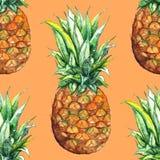 Предпосылка текстуры картины тропического плодоовощ ананаса акварели экзотическая безшовная Стоковые Фотографии RF