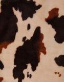 Предпосылка текстуры коровы Стоковые Фотографии RF