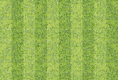 Предпосылка текстуры плавно зеленой травы Стоковые Фотографии RF