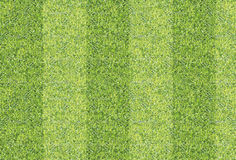 Предпосылка текстуры плавно зеленой травы Стоковое Фото