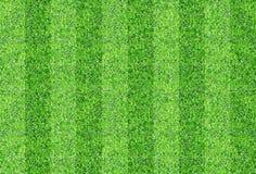 Предпосылка текстуры плавно зеленой травы Стоковое фото RF