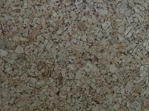 Предпосылка текстуры древесины дуба Стоковое фото RF