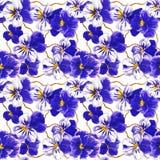 Предпосылка текстуры цветочного узора с голубыми цветками pansy Стоковая Фотография RF