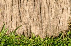Предпосылка текстуры цемента травы смешанная Стоковая Фотография
