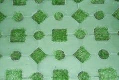 Предпосылка текстуры цемента & травы Стоковые Фото
