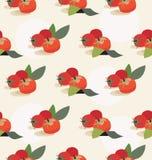 Предпосылка томата Стоковая Фотография RF
