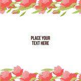 Предпосылка тюльпана цветка Стоковое Изображение
