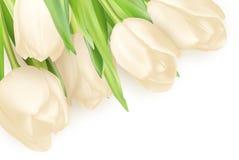 Предпосылка тюльпанов декоративная 10 eps Стоковое фото RF