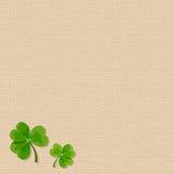 Предпосылка увольнения дня St. Patrick с листьями shamrock Вектор EPS-10 Стоковые Изображения