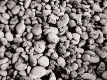 Предпосылка утеса черно-белая Стоковые Фото