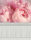 Предпосылка/фон стены весны стоковая фотография rf
