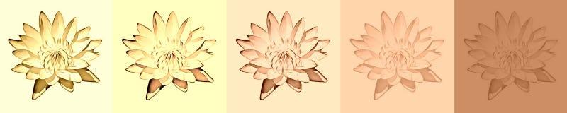 Предпосылка - флористическая иллюстрация штока