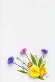 предпосылка цветет белизна Взгляд сверху, плоское положение Стоковое Изображение