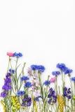 предпосылка цветет белизна Взгляд сверху, плоское положение Стоковое Фото