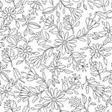 Предпосылка цветка в черно-белом для красить Стоковое Изображение RF