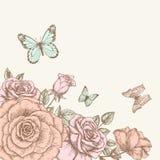 Подняла и бабочка 1 иллюстрация вектора