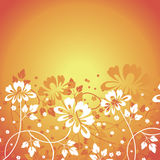 Предпосылка цветка Стоковая Фотография RF