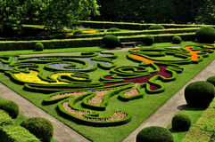 Предпосылка цветка Garden Стоковое Фото