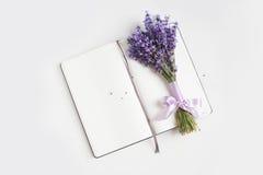 Предпосылка цветка Lavander Стоковое Фото