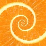 Предпосылка цитруса оранжевая спиральная Стоковая Фотография