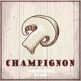 Предпосылка эскиза свежих овощей Винтажная иллюстрация чертежа руки champignon Стоковое Изображение RF