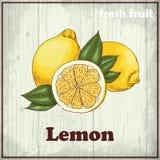 Предпосылка эскиза свежих фруктов Винтажная иллюстрация чертежа руки лимона Стоковое Изображение RF