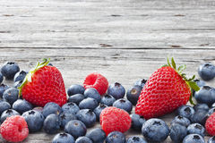 Предпосылка ягод Стоковое фото RF