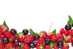 Предпосылка ягод Стоковая Фотография RF