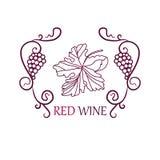 Предпосылка ярлыка виноградин вина Стоковое фото RF