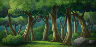 Предпосылка для джунглей и естественное Стоковые Фотографии RF