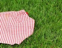 Предпосылка для пикника - шотландка на траве Стоковое фото RF