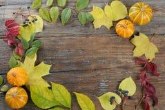 предпосылка aunumn выходит жизнь над неподвижным благодарением деревянным Стоковая Фотография RF