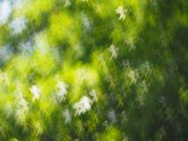 Предпосылка bokeh абстрактных светов роскошная Стоковое Изображение RF
